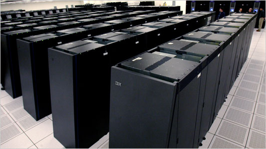 The Blue Gene Supercomputer was used to approximate brain function