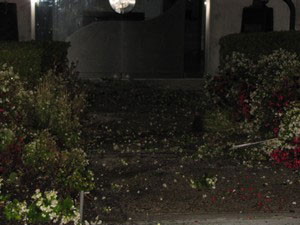 ALF attack on Phenomenex, Los Angeles, CA