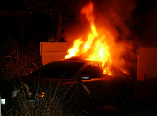 Animal rights extremists torched my car in 2009