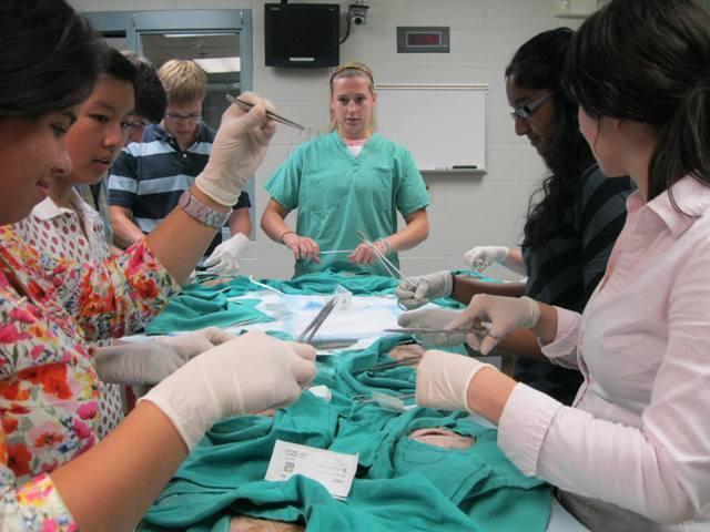 Students pick up instruments and learn a continuous suture