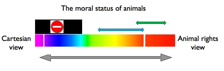 animal welfare model of animal research 2