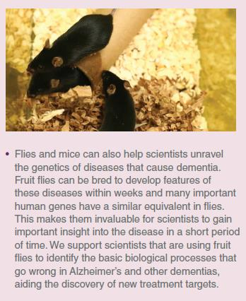 Animal Research is Important