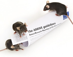 ARRIVE guidelines
