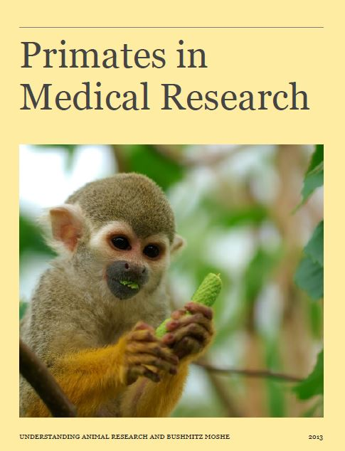 Primates in Medical Research