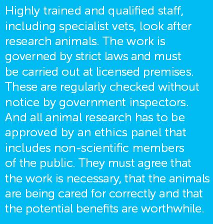CRUK animal welfare
