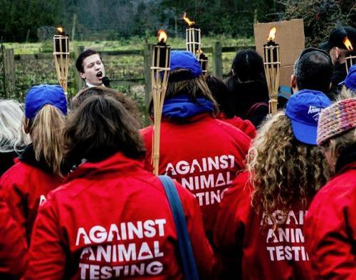 Luke Steele speaks at a demonstration outside NIBSC in December 2013
