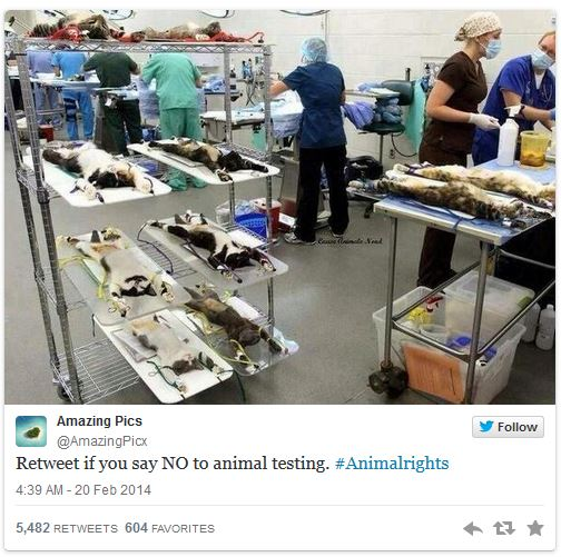 Twitter retweet no to animal testing