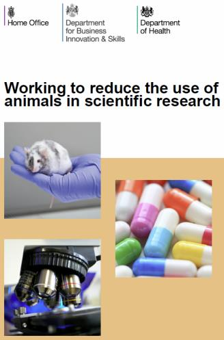use of animal in scientific research essay An essay or paper on the use of animals in scientific research the use of animals in scientific research cannot be justified on moral grounds animals have rights.