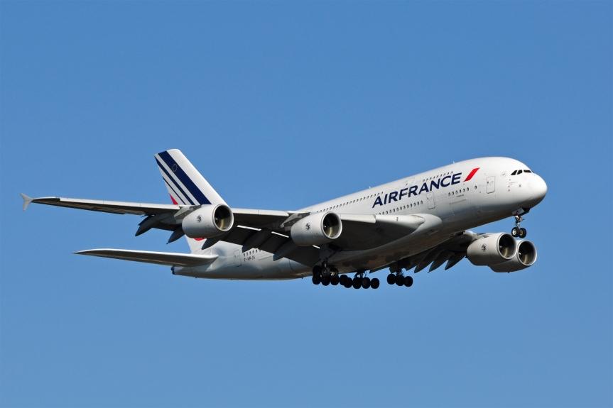Air France primates