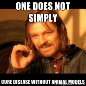 LotR Animal Models