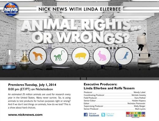animal rights or wrongs