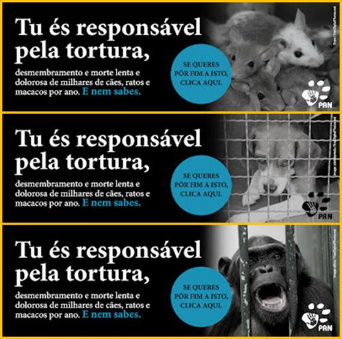 "Banners from PAN that can be found on their Facebook page. They all read ""You are responsible for the torture, dismemberment and the slow and painful death of thousands of dogs, rats and monkeys every year. And you don't even know it."""