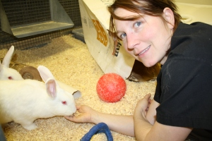 Animal Tech with Rabbit