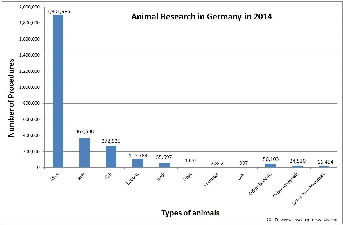 working thesis on animals Introduction each year between 3 and 4 million animals are euthanized each year these animals include any domestic animal, such as cats, dogs,.