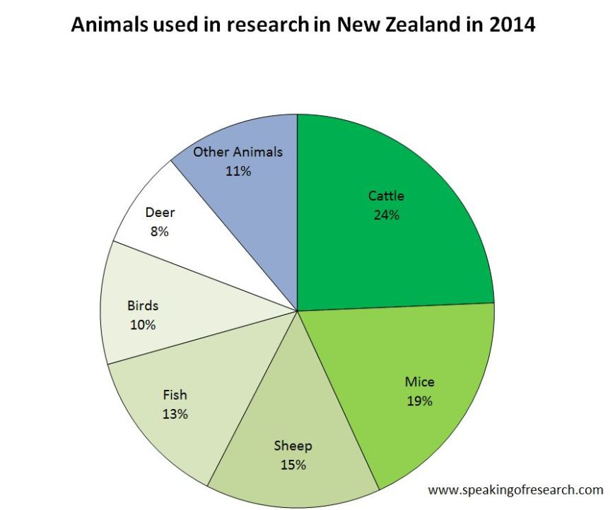 Animal Experiments in New Zealand in 2014. Click to Enlarge