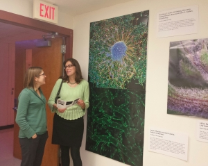 Jordana Lenon takes a tour of the new Madison Science Museum with Ellen Bechtol, museum staff member. Behind them is one of the Why Files Cool Science Image Contest winners, of marmoset embryonic stem cells forming neurons, submitted by Primate Center scientists and students in 2015. http://whyfiles.org/category/cool-science-images/