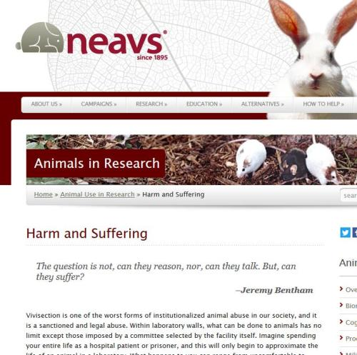 NEAVS website, April 2016
