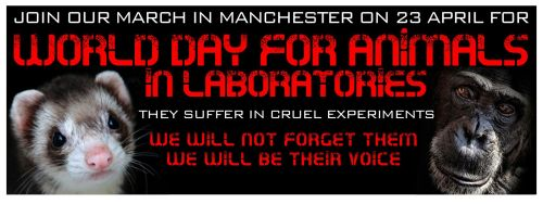 An advertisement for Saturday's march. Note the image of a chimpanzee – a species banned from use in research in the UK since 1986