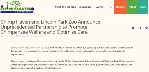 Chimp Haven LPZ announcement