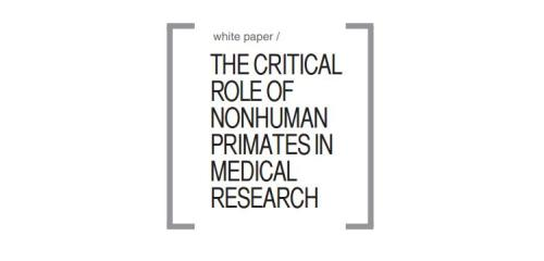 Research paper on Animal Testing (specifically medical research)?