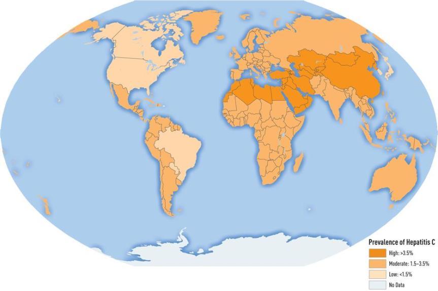 Hepatitis C prevalence