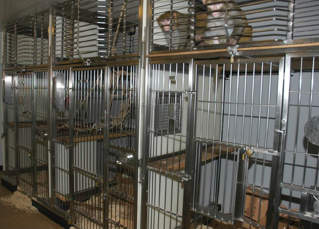primate-caging.jpg