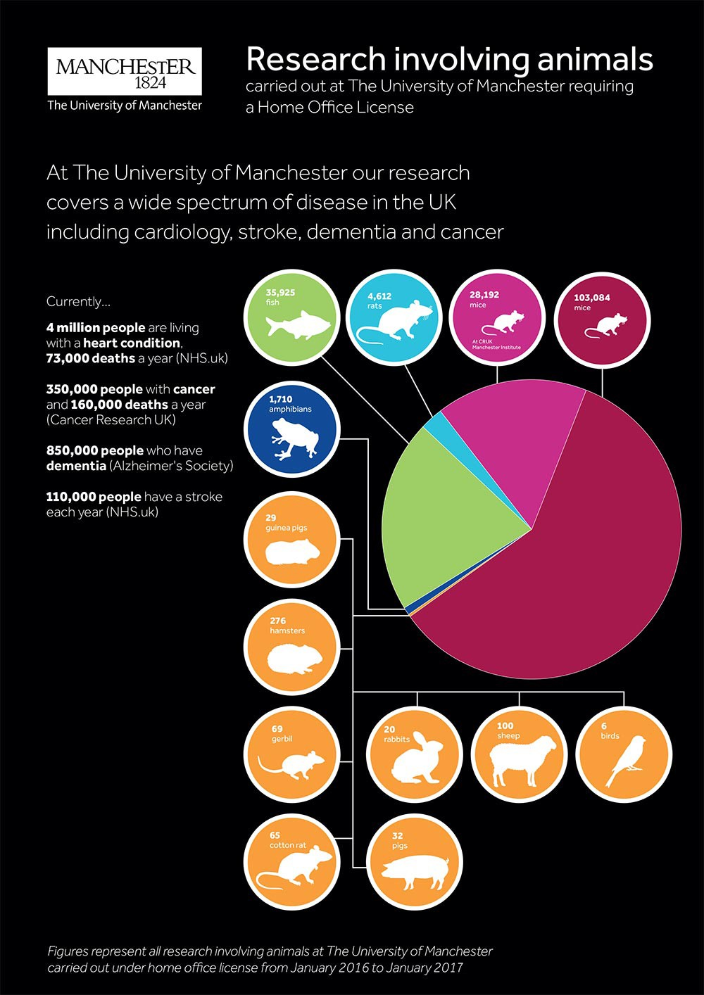 openness by the numbers  ten universities conduct one